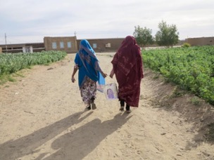 The back of two women, walking along a dust road toward buildings