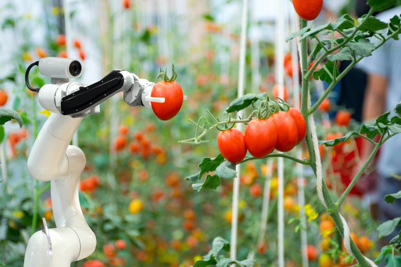 AI robot tomatoes shutterstock