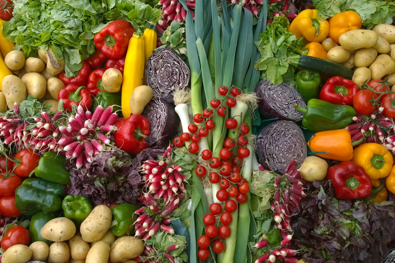 A display of many different types of vegetables