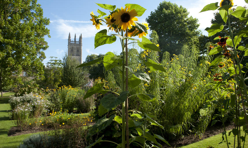 Oxford Botanic Gardens with view of Magdalen College tower, Oxford, UK