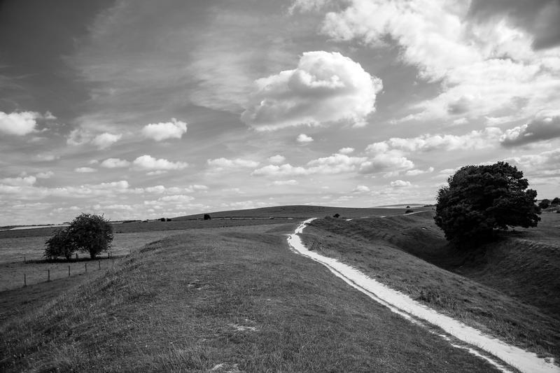 Wiltshire chalk downland