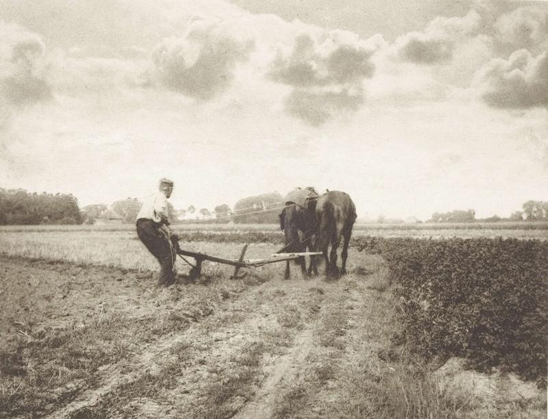 A black and white picture of a dutch peasant ploughing with two horses
