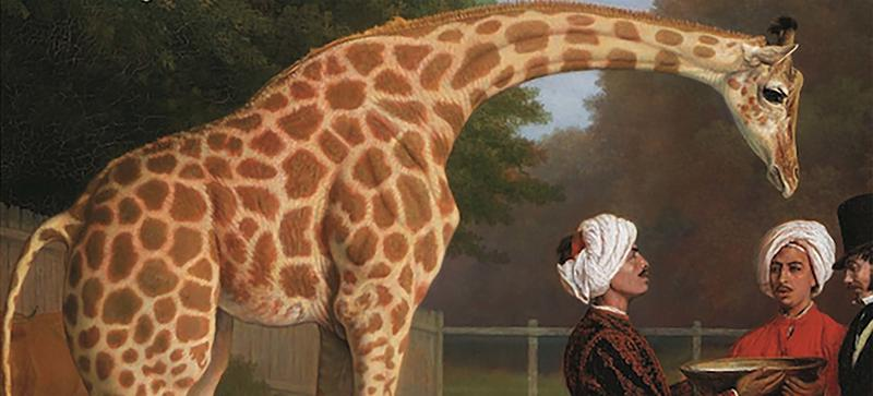 An extract from the cover of 'Menagerie, The history of exotic animals in England' - a giraffe is stood next to three gentlemen in turbans