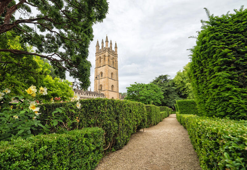 A gravel pathway between low hedges in Oxford Botanic Gardens, with part of Magdalen College in the background