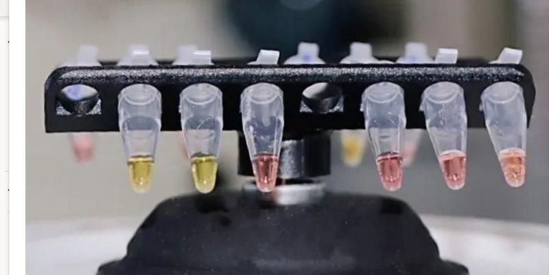 Vials of different liquids held within a device