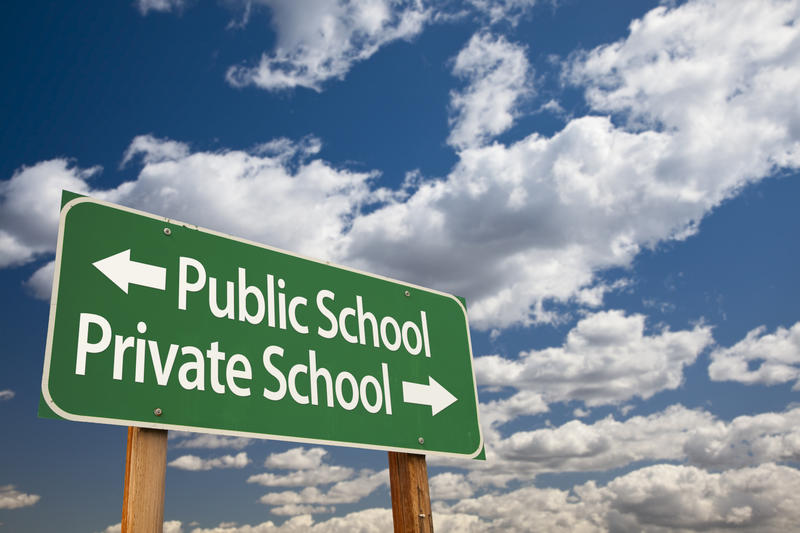 A road sign, with 'public shool' next to an arrow pointing left, and 'private school' next to an arrow pointing right