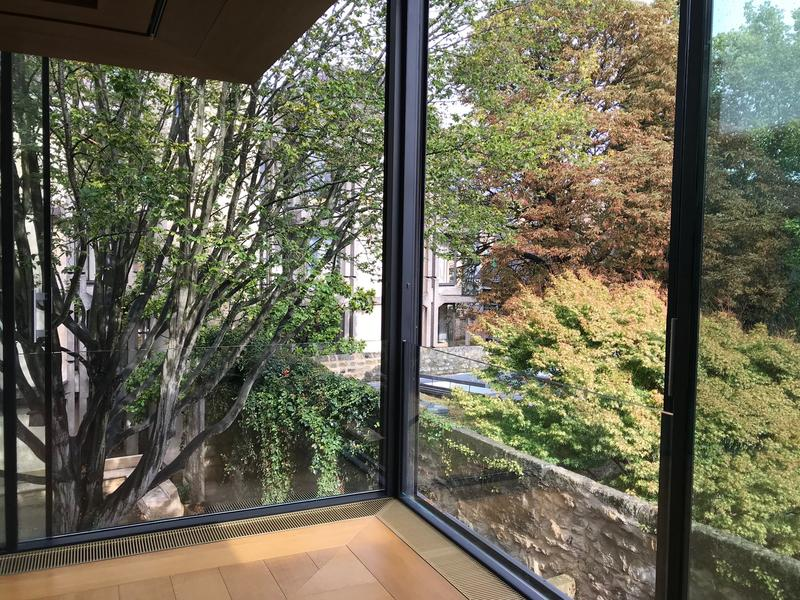 A view out of a window in the St John's library showing you are amongst the tree canopy