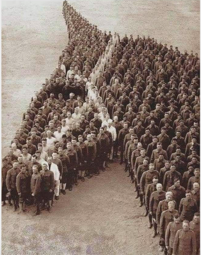 An old photo from World War One of soldiers stood in the shape of a horse's head, with some amongst them dressed in white to recreate the bridle